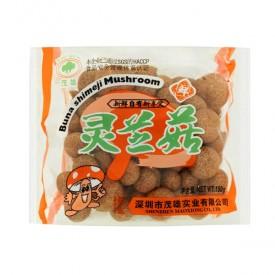 Mushroom Buna Shimeji - Mao Xiong