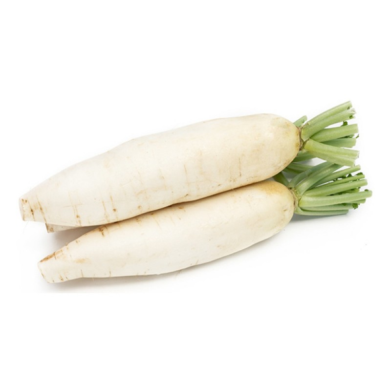 Radish, White Fresh