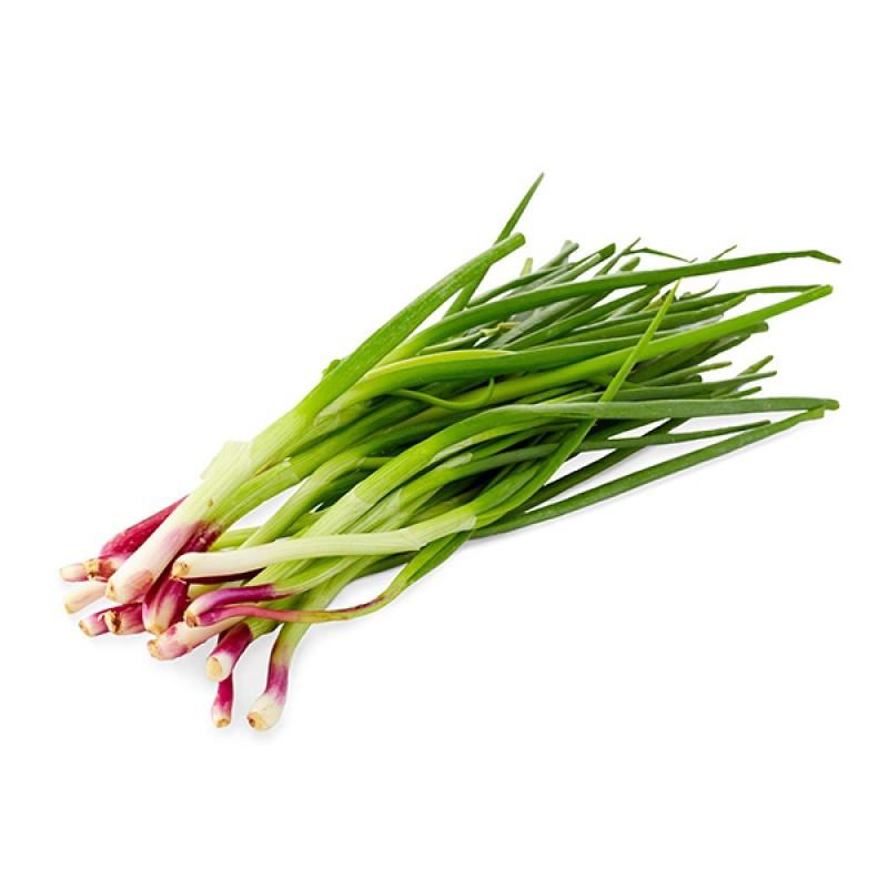 Spring Onion Fresh